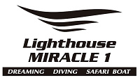Lighthouse Miracle1